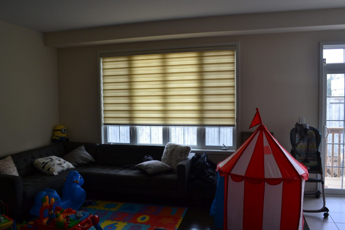Breaking Down the Cost of Roller Zebra Blinds in Canada